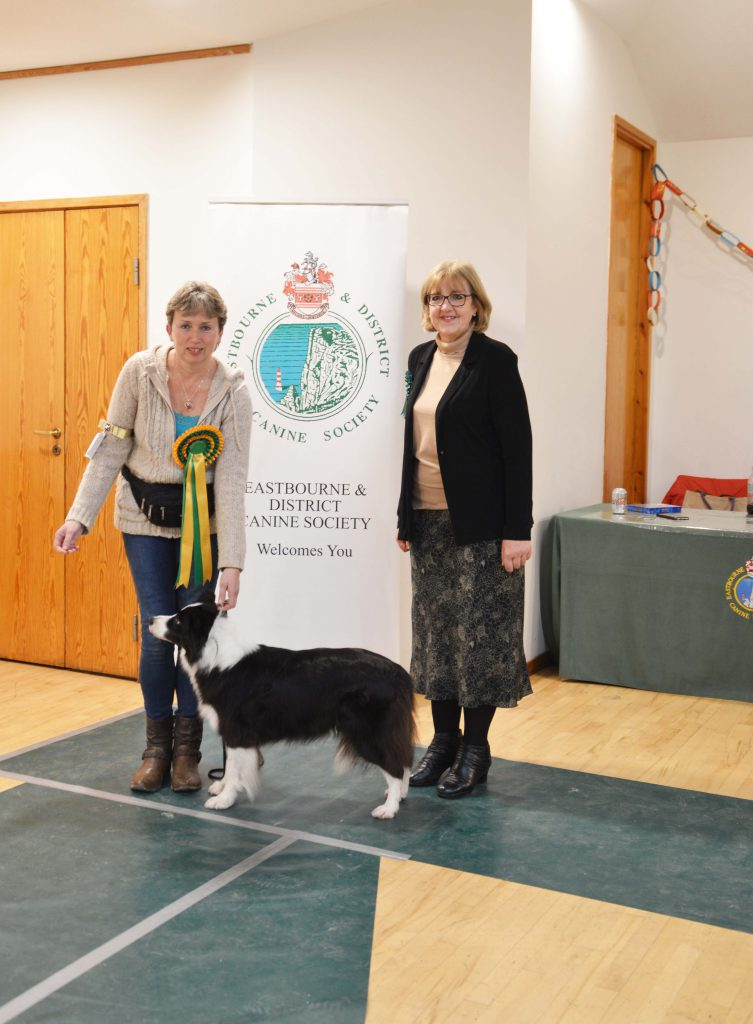 Limited Show 2018 Results – Eastbourne & District Canine Society